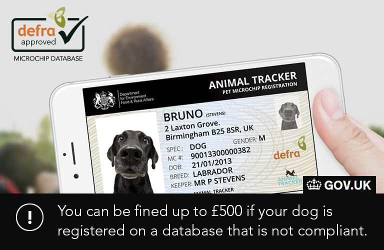 Dog Microchip Registration Official UK Governent Approved Database