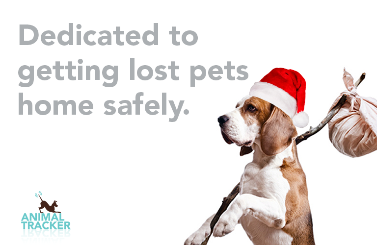 We are dedicated to getting lost pets home safely
