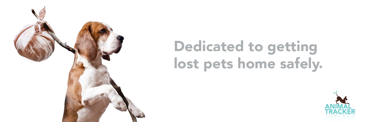 Dedicated to getting lost pets home safely